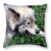 Miley The Husky With Blue And Brown Eyes - Impressionist Artistic Work Throw Pillow by Doc Braham