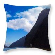 Milford Sound #3 Throw Pillow