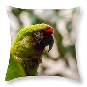 Military Macaw Throw Pillow