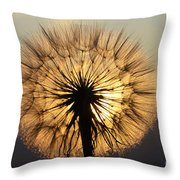 Beauty Of The Dandelion 2 Throw Pillow