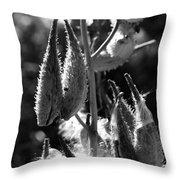 Milkweed #10 Throw Pillow