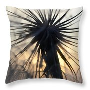 Beauty Of The Dandelion 1 Throw Pillow