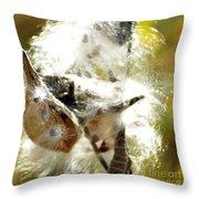Milkweed Blowout Throw Pillow