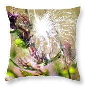 Milkweed Cotton  Throw Pillow