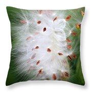 Milkweed Explosion Throw Pillow
