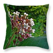 Milkweed Flowers And Leaves Throw Pillow