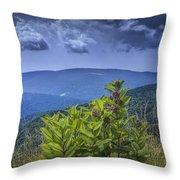 Milkweed Plants Along The Blue Ridge Parkway Throw Pillow