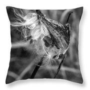 Milkweed Pod Monochrome Throw Pillow