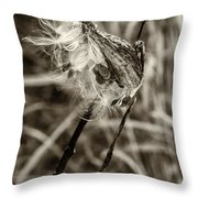 Milkweed Pod Sepia Throw Pillow