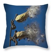 Milkweed Pods On A Blue Background  Throw Pillow