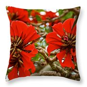 Milkwood Tree Blossoms In Donkin Reserve In Port Elizabeth-south Africa Throw Pillow