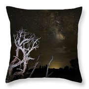 Milky Way Over Arches National Park Throw Pillow