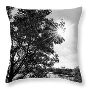 Mill Creek Marsh Afternoon Sun Throw Pillow