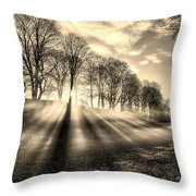 Mill Of Shadows Throw Pillow