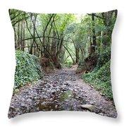 Miller Grove 2013 Horizontal Throw Pillow