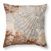 Million Years Ago 1 Throw Pillow