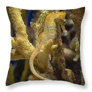 Mimic Seahorse Throw Pillow