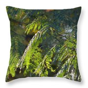 Mimosa At Sunset Throw Pillow
