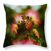 Mimosa Blooms Throw Pillow