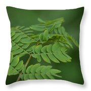 Mimosa Greens Throw Pillow