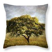 Mimosa Magic Throw Pillow
