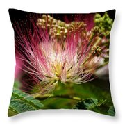 Mimosa- The Beautiful Bloom Throw Pillow