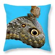 Mindo Butterfly Throw Pillow by Al Bourassa