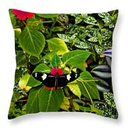 Mindo Butterfly At Rest Throw Pillow by Al Bourassa