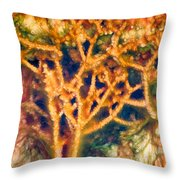 Mineral Branches Hot Springs Throw Pillow