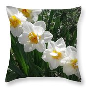 Miner's Wife Daffodils Throw Pillow