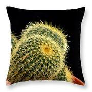 Mini Cactus In A Pot Throw Pillow