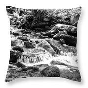 Mini Cascades Smoky Mountains Bw Throw Pillow