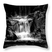 Mini Falls Black And White Throw Pillow