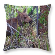 Mini Moose Throw Pillow