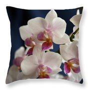 Mini Orchids 3 Throw Pillow
