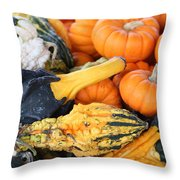 Mini Pumpkins And Gourds Throw Pillow