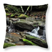 Mini Waterfalls Throw Pillow by Kaye Menner
