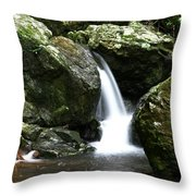 Miniature Cascade Throw Pillow