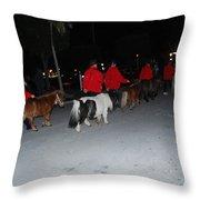 Miniature Ponys Throw Pillow