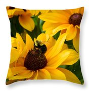 Mining Gold Throw Pillow