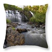 Mink Falls Throw Pillow