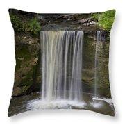 Minneopa Falls 37 Throw Pillow