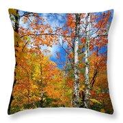 Minnesota Autumn Foliage Throw Pillow