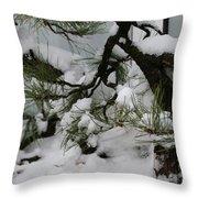 Minnesota Bonsai Throw Pillow