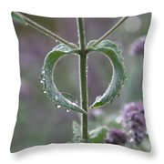 Mint Heart Throw Pillow