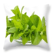 Mint Sprigs In Bowl Throw Pillow by Elena Elisseeva