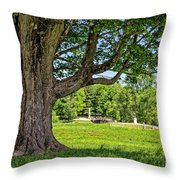 Minute Man National Historical Park  Throw Pillow