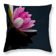 Mirror... Mirror On The Water Throw Pillow