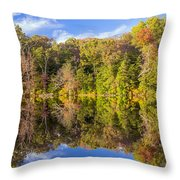 Mirror Reflections Of Fall Throw Pillow