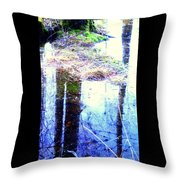 Climbing The Mirror Trees Throw Pillow